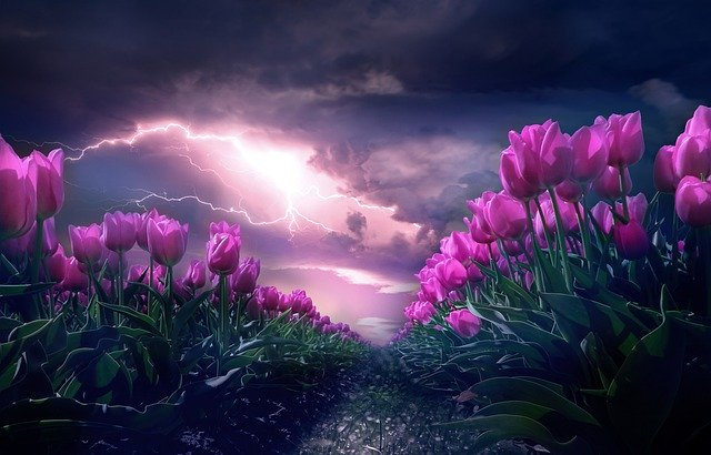spring storm